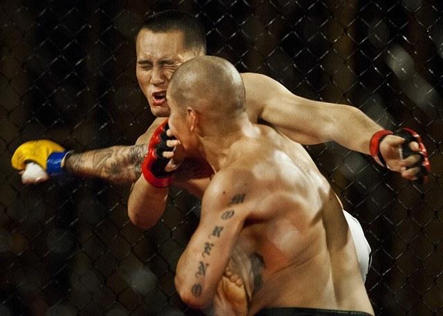 mixed-martial-arts-1045215_640