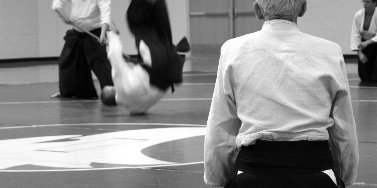 The 14 Best Martial Arts for Self Defence-The Self Defence