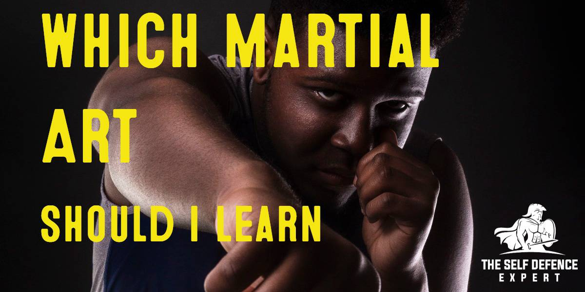 WHICH MARTIAL ART SHOULD I LEARN