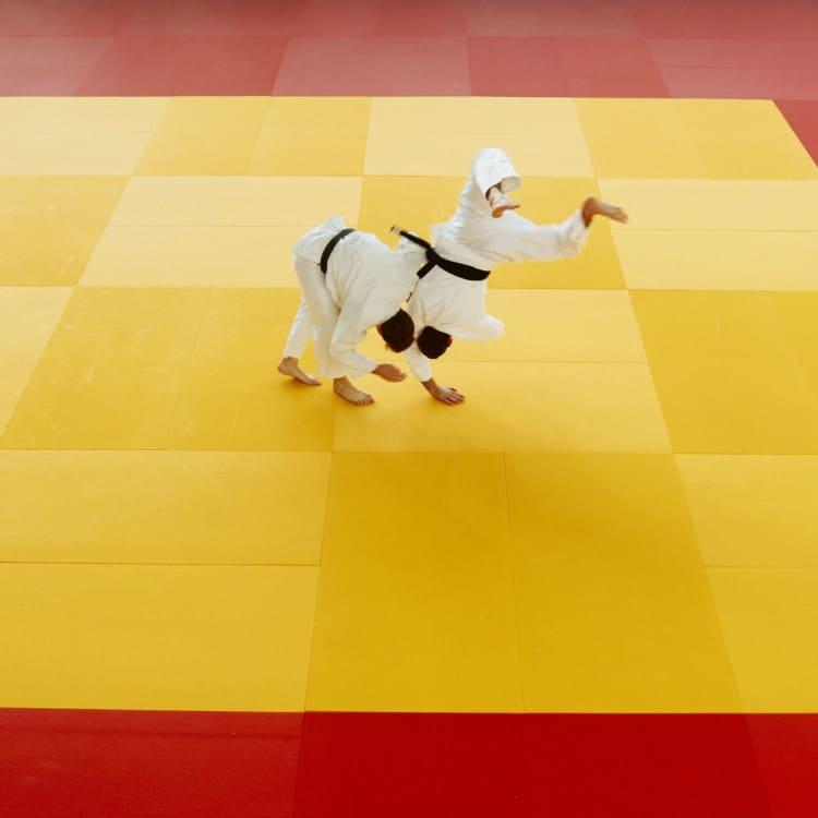 Judo v Jiu Jitsu